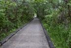 6. Grays Harbor Wildlife Refuge